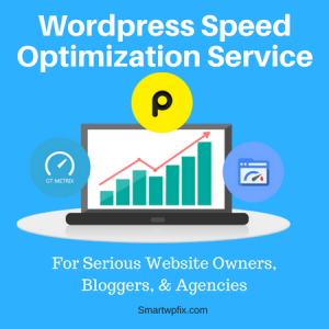 Wordpress Website Speed Optimization Services